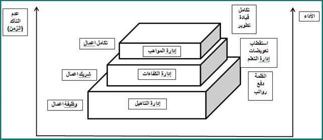 مراحل إدارة المواهب
